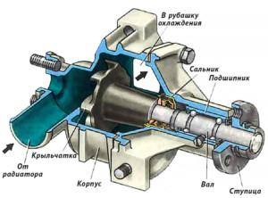 Устройство помпы двигателя